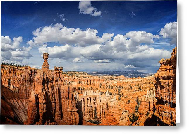 Bryce Canyon Panorama Greeting Card by Colin and Linda McKie