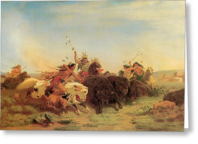 Buffalo Hunt Greeting Card by Charles Wimar