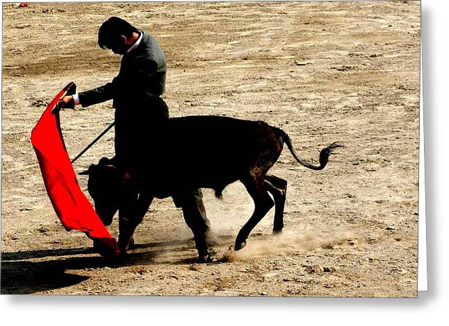 Bullfighter In Training Greeting Card