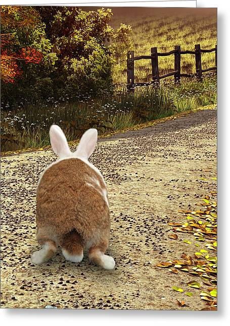 Bunny Trail Greeting Card by Diane Bell