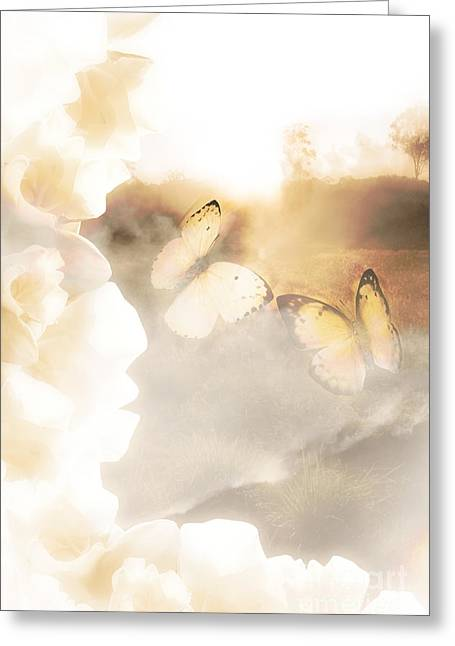 Butterfly Dreams Greeting Card by Jorgo Photography - Wall Art Gallery