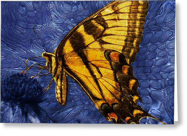 Butterfly Greeting Card by Jack Zulli