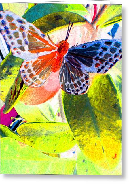 Butterfly  Greeting Card by Nico Bielow