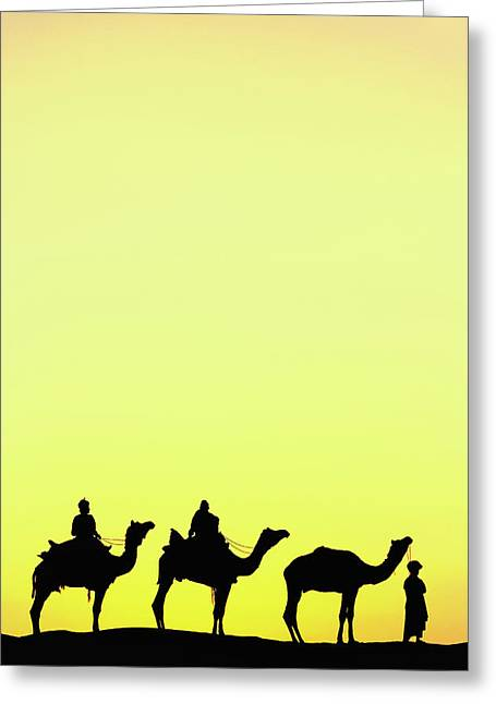 Camels And Camel Driver Silhouetted Greeting Card by Adam Jones