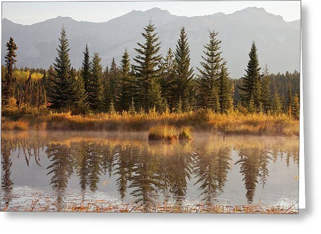 Canada, Alberta, Jasper National Park Greeting Card by Jaynes Gallery