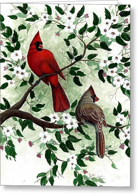 Cardinals Greeting Card by Steven Schultz