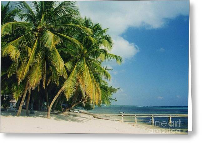 Caribbean Paradise Greeting Card by John Clark