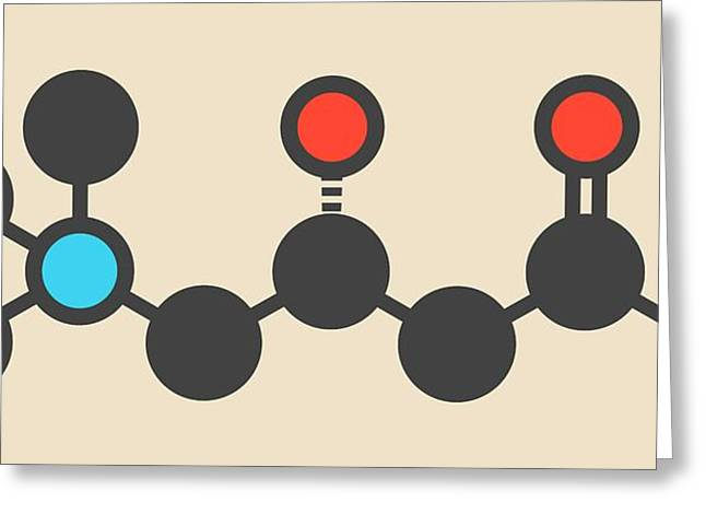 Carnitine Food Supplement Molecule Greeting Card by Molekuul