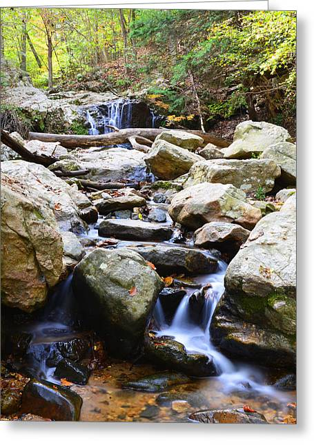Greeting Card featuring the photograph Cascade Falls by Dana Sohr