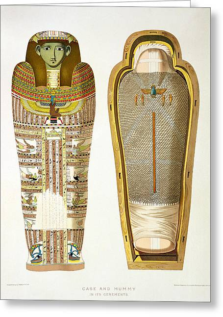 Case And Mummy In Its Cerements Greeting Card