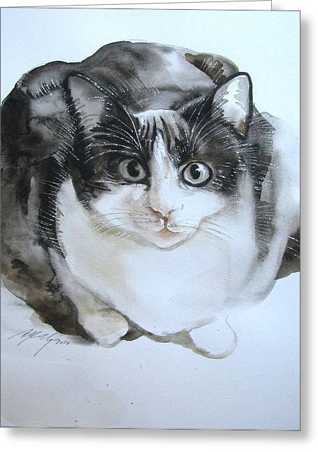 Cat In Black And White  Greeting Card by Alfred Ng