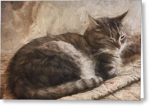 Cat On The Bed Painterly Greeting Card by Carol Leigh