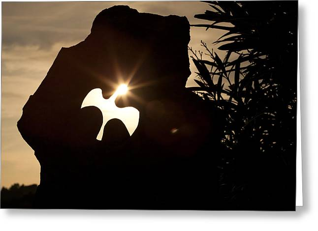 Cathar Dove Greeting Card by Ruben Vicente