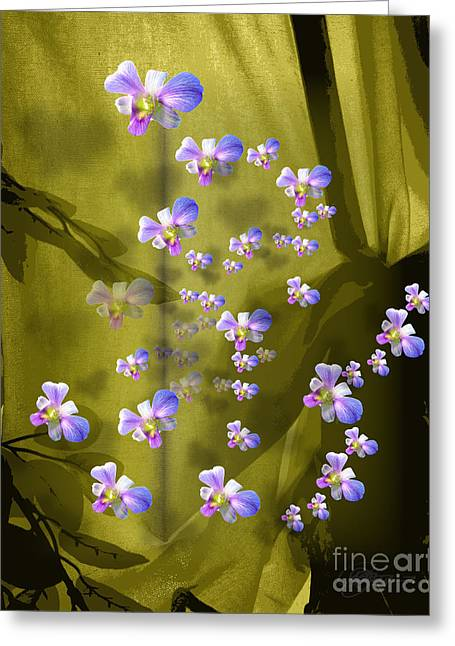 Cattleya Triage Dafoi Art 2 Of 3 Greeting Card