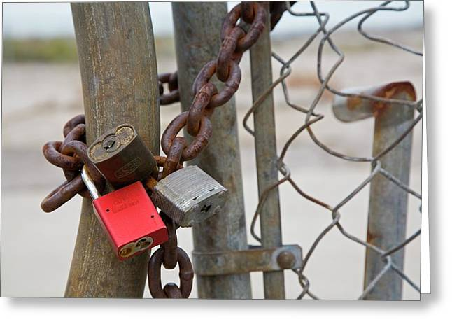 Chained And Padlocked Gate Greeting Card by Jim West