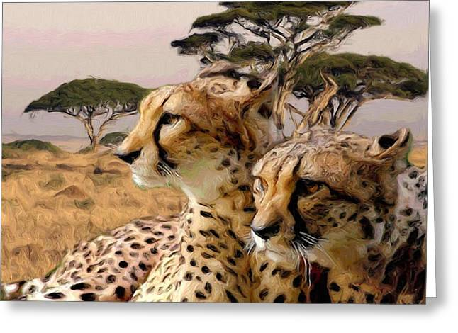 Cheetah Brothers Greeting Card by Roger D Hale