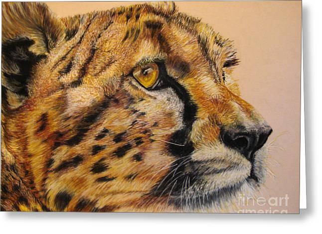 Cheetah Gaze Greeting Card by Ann Marie Chaffin