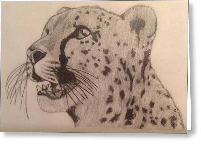 Cheetah Greeting Card by Noah Burdett