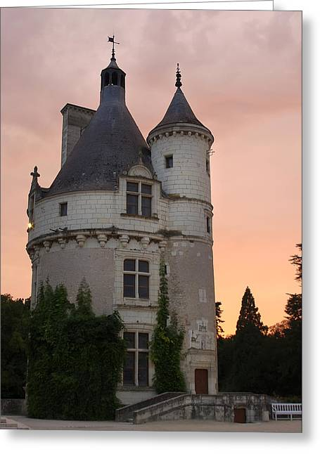 Chenonceau Castle Greeting Card by Ioan Panaite