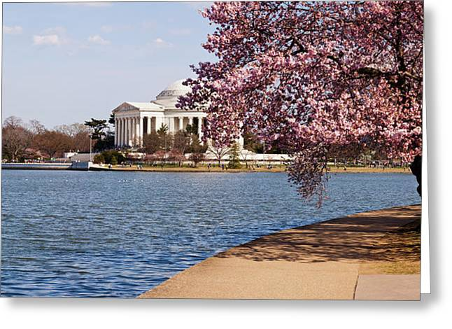 Cherry Blossom Trees In The Tidal Basin Greeting Card by Panoramic Images