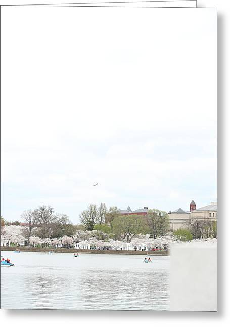 Cherry Blossoms - Washington Dc - 01138 Greeting Card by DC Photographer