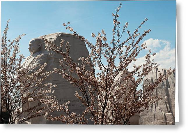 Cherry Trees In Front Of A Memorial Greeting Card