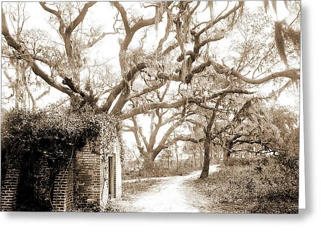 Chicora Park, Charleston Greeting Card