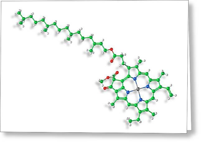 Chlorophyll A Molecule Greeting Card by Carlos Clarivan