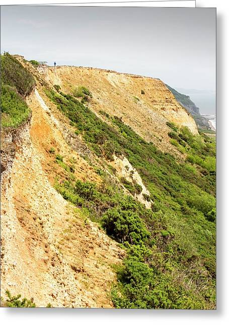 Coastal Cliff On The Jurassic Coast Greeting Card by Ashley Cooper
