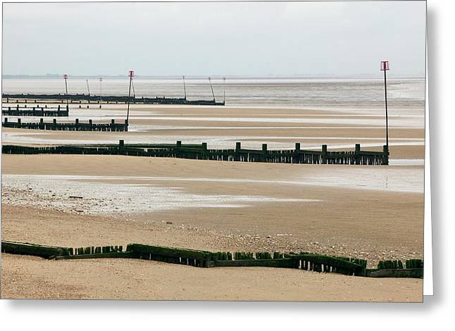 Coastal Defences Greeting Card by Colin Cuthbert/science Photo Library