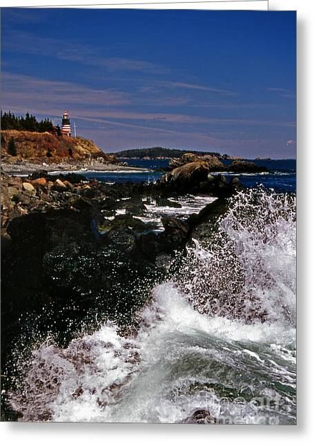 Coastal Maine Greeting Card by Skip Willits