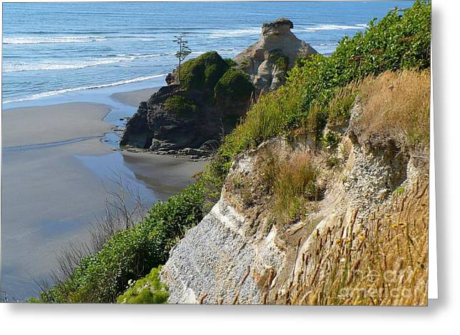 Coastal Strata Greeting Card by Gayle Swigart