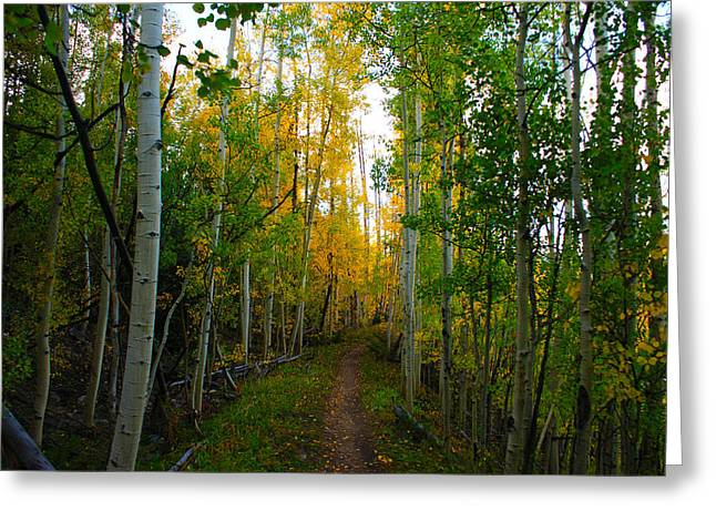 Colorado Fall Hike Greeting Card by Michael J Bauer
