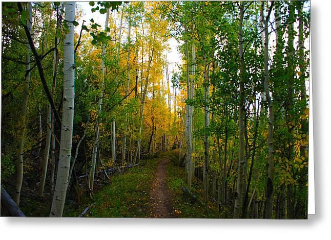 Colorado Fall Hike Greeting Card