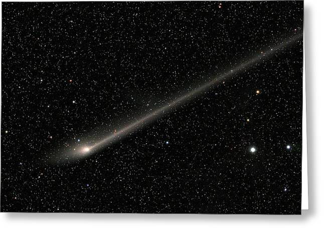 Comet C2011 L4 Greeting Card by Damian Peach