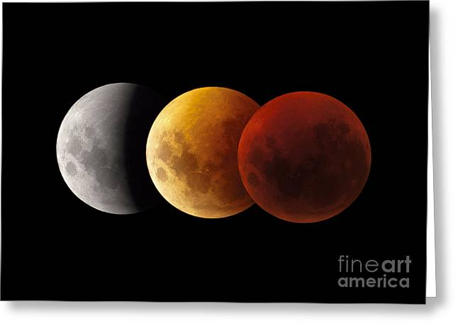Composite Image Of Lunar Eclipse Greeting Card by Philip Hart