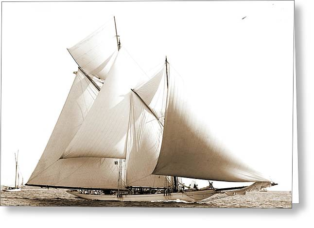 Constellation, Constellation Schooner, Commodore Gerry Cup Greeting Card