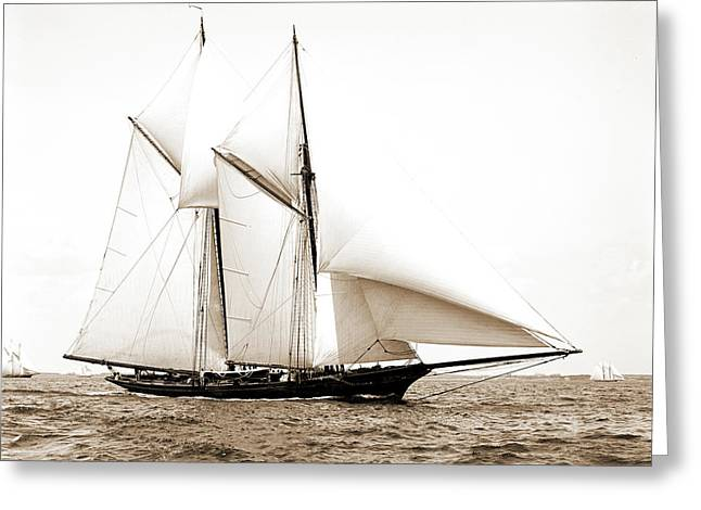 Constellation, Constellation Schooner, Yachts Greeting Card