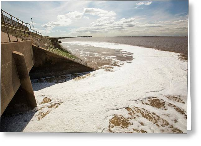 Contaminated Water Entering The Humber Greeting Card by Ashley Cooper