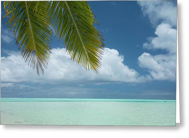 Cook Islands, Aitutaki (aka Araura Greeting Card by Cindy Miller Hopkins