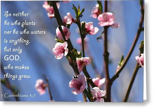 1 Corinthians 3 7 Greeting Card