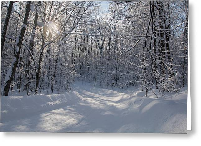 Cottage Country Winter Greeting Card by Pat Speirs