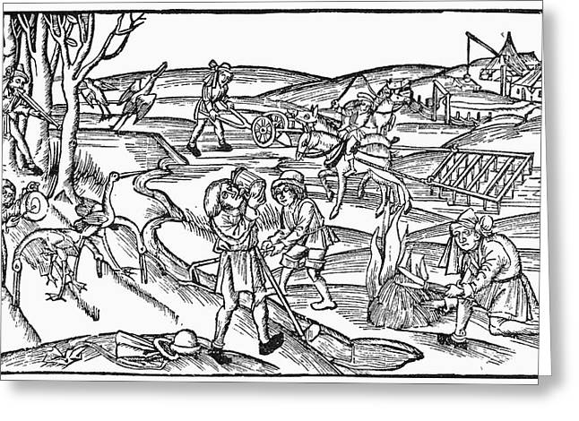 Country Life, 1504 Greeting Card