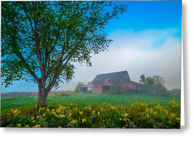 Country Morning Greeting Card by Brian Stevens