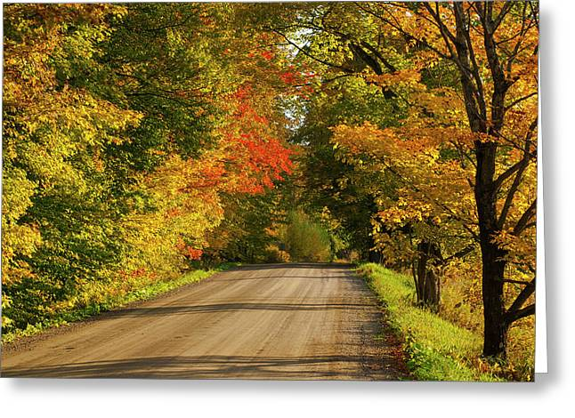 Country Road In Autumn  West Bolton Greeting Card by David Chapman