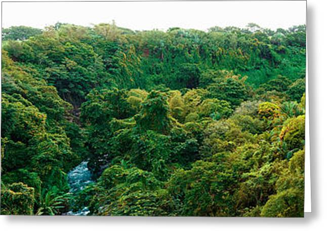 Countryside, Mauritius Island, Mauritius Greeting Card by Panoramic Images