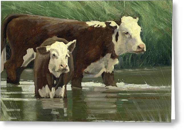 Cows In The Pond Greeting Card