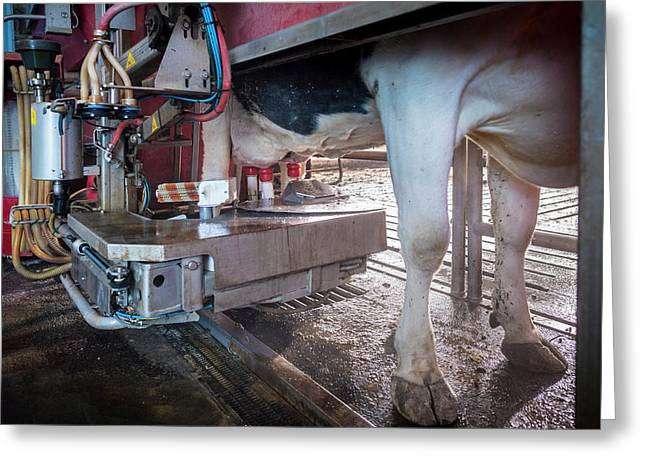 Cow's Udder In Milking Machine Greeting Card by Aberration Films Ltd