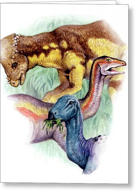 Cretaceous Herbivorous Dinosaurs Greeting Card by Deagostini/uig