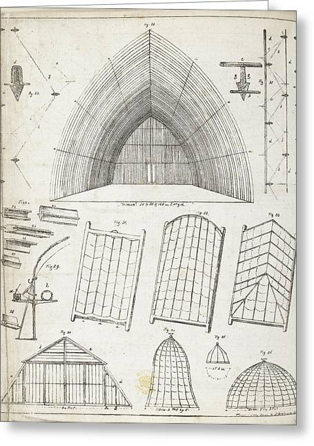 Cross Sections Of Greenhouses Greeting Card by British Library